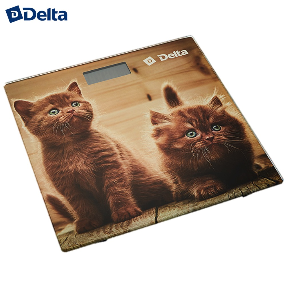 Bathroom Scales Delta D-9229 Household supplier products outdoor electronic weighing weight smart floor scale