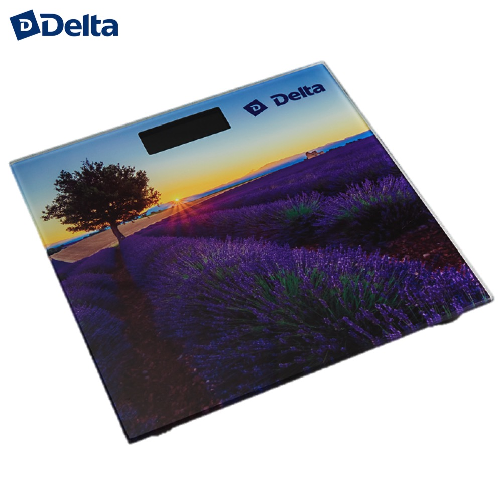 Bathroom Scales Delta D-9302 Household supplier products outdoor electronic weighing weight smart floor scale