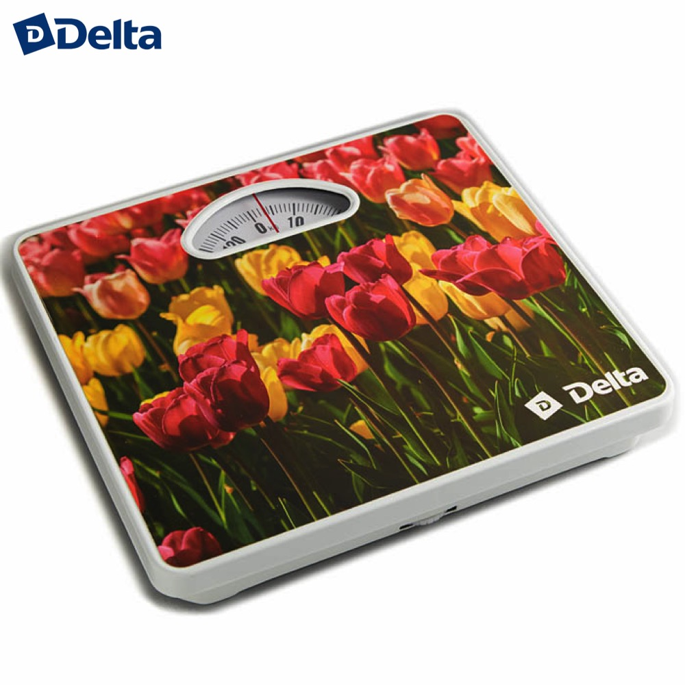 Bathroom Scales Delta D-9400 Household supplier products outdoor mechanical weighing weight