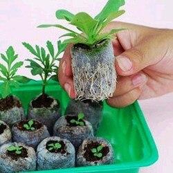 10 pcs 30mm jiffy peat 펠렛 씨앗 시작 플러그 씨앗 스타터 팔레트 묘목 토양 블록 전문 사용하기 쉬운