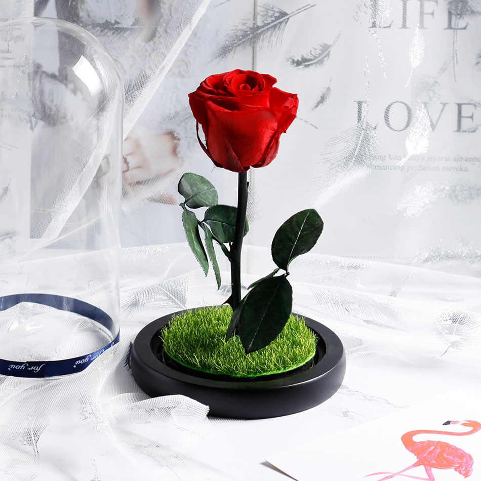 Rose Di Kubah Kaca Kecantikan dan Binatang Abadi Bunga Mawar Bunga Dekorasi Valentine 'S Day (Hari Valentine GIF Ulang Tahun Natal Pernikahan Hadiah