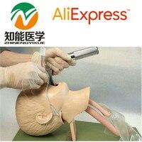 BIX J4A Advanced Child Trachea Intubation Training Model