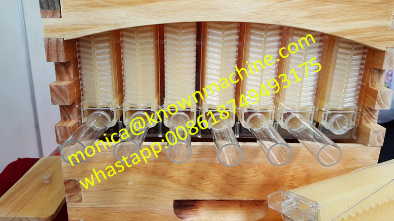 new style self flowing plastic beehive frame with 7 pieces honey comb