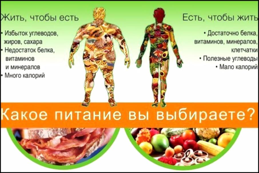питание через 3 часа для похудения