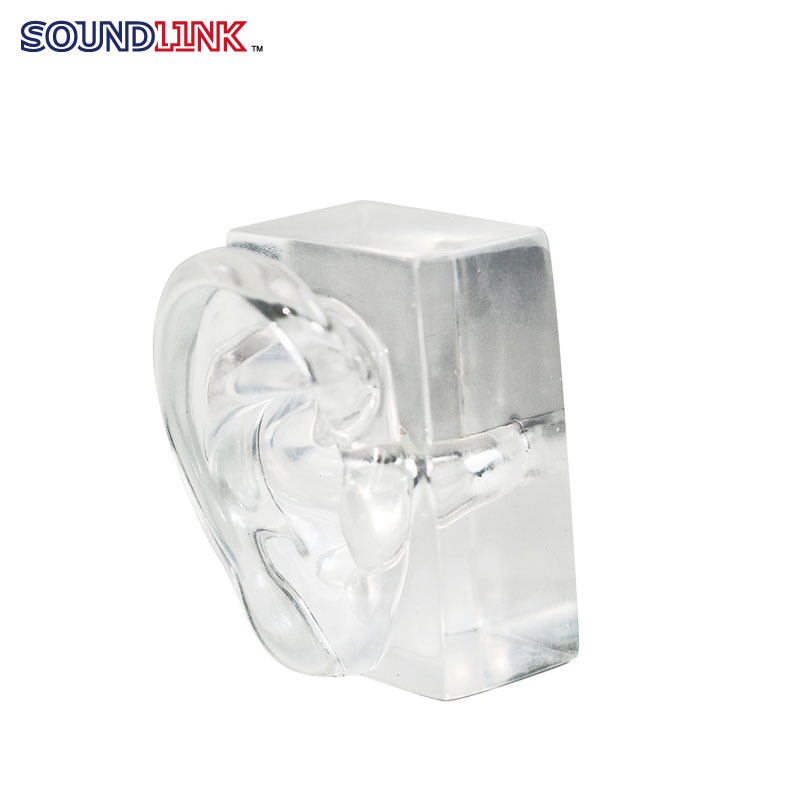 China Manufature Transparent Acrylic Ear Model For Showing Hearing Aids