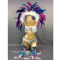 free shipping2016 hot selling Sexy Samba Rio Carnival Costume handmde new belly dance costume with white Feather Head piece
