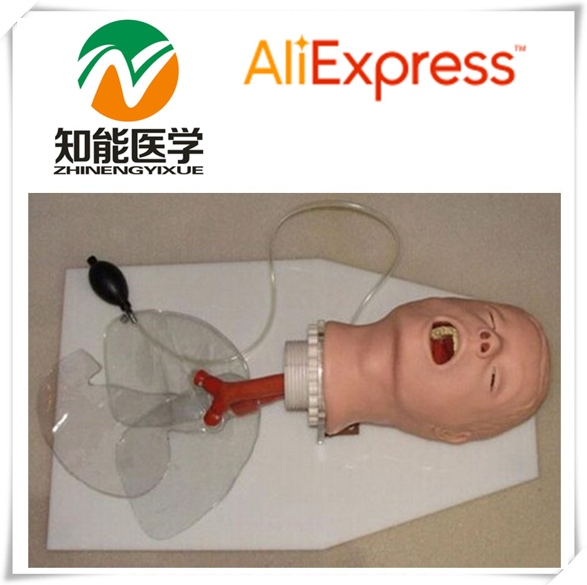 BIX-J50 Trachea Intubation Medical Training Model WBW107 iso economic newborn baby intubation training model intubation trainer