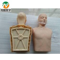 BIX/CPR100A Half-Body Electronic CPR Training Manikin / Adult CPR Half Body Model W105