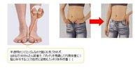 бесплатная доставка гарантировано 100% новые оригинальные магнитные силиконовой массаж ног потеря веса для похудения легкий healthyjhb-058