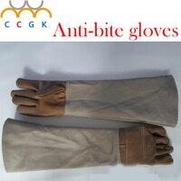 Anti bite handschoenen 58 cm veiligheid Lederen handschoenen plus dikke catch animal zoals hond, kat, reptiel, snake Huisdieren training voeden handschoenen