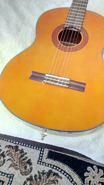 2Schaller Style Straplocks Elektrische Akustik Gitarre Bass Strap Locks ButtonZP