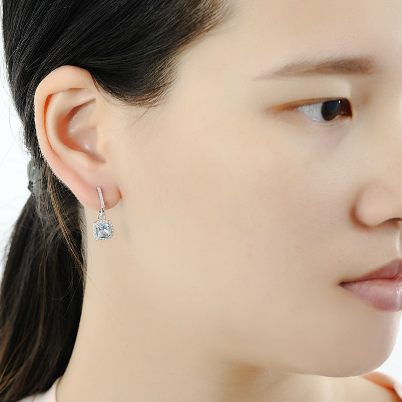 Silver EarringsE301120BKZSL925
