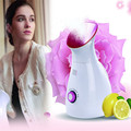 3 in 1 household DIY Fruit Ionic Facial Steamer Electric Facial Sauna Mist Sprayer Vapor Moisturizing Machine Skin Humidifier