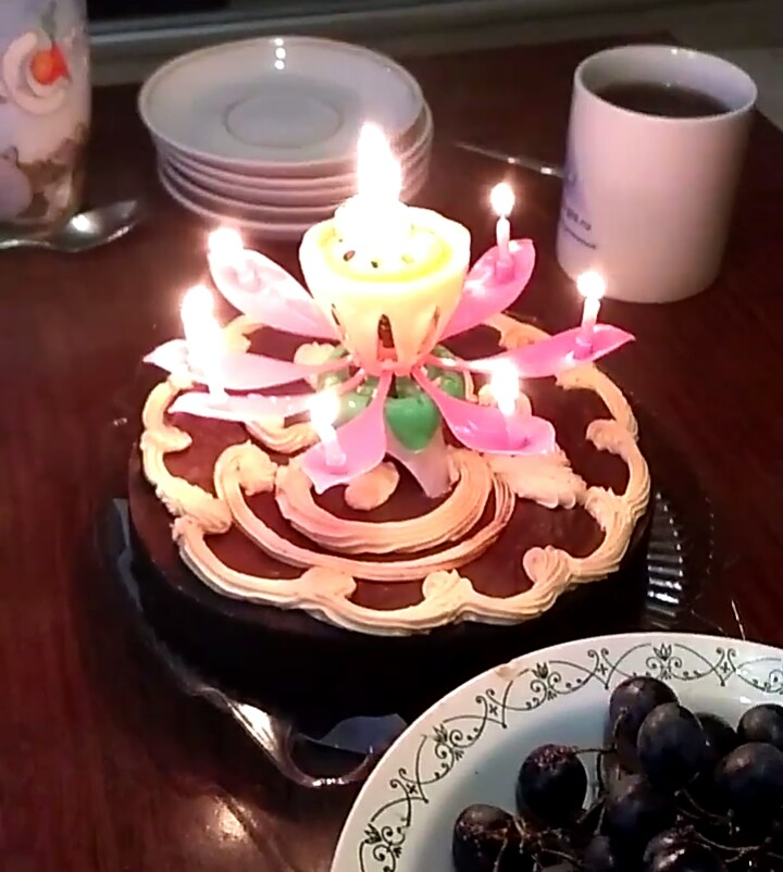 Very Impressive Birthday Girl Happy Incinerate Wick And The Flower Opens Music Plays Candle Disposable But Totally Worth Money