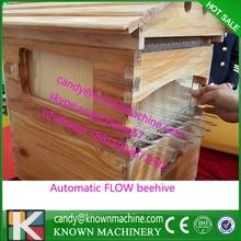 Пчеловодство пчеловодство, отток улей