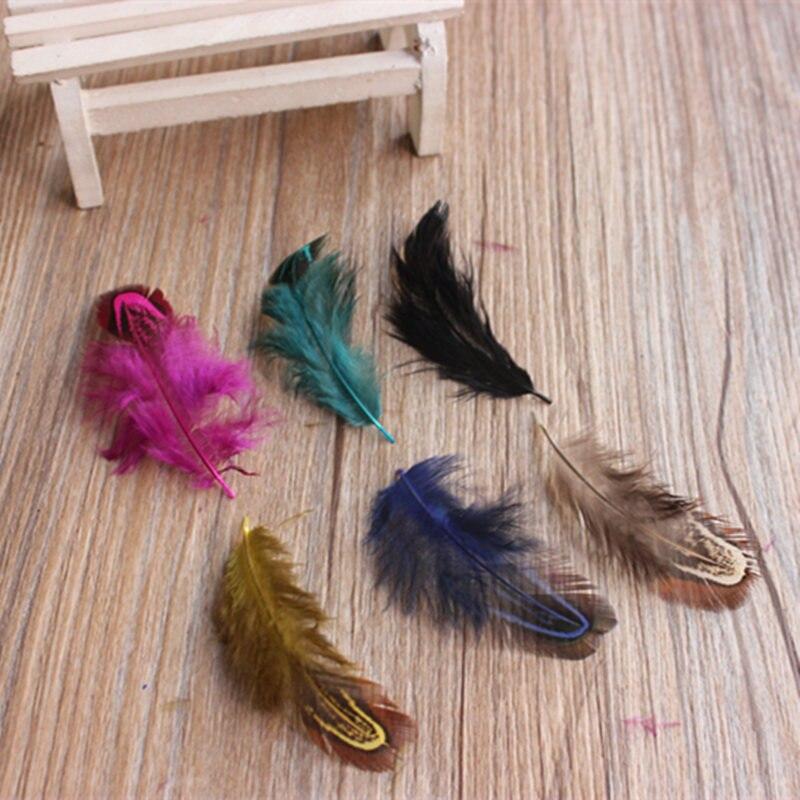 Retail 50 pcs 4-8cm Rare Precious Party Decorative Multi-colour Pheasant Plume Feather Natural Feathers for Home Decor