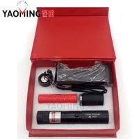 Cadeau boîte mini haute puissance brûlant pointeur laser vert pointeur laser avec 18650 batterie et chargeur protable linternas