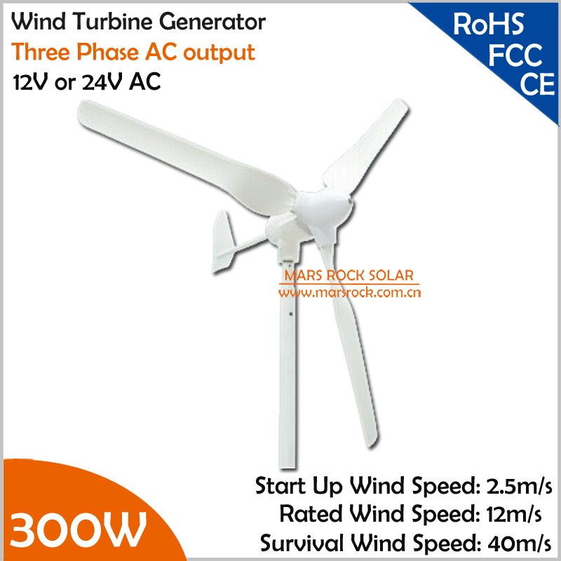 1.5m Wheel Diameter 12V or 24V AC 3 Blades 3 Phase Horizental Axis Small 300W Wind Turbine Generator  for Home or Roof Windmill1.5m Wheel Diameter 12V or 24V AC 3 Blades 3 Phase Horizental Axis Small 300W Wind Turbine Generator  for Home or Roof Windmill