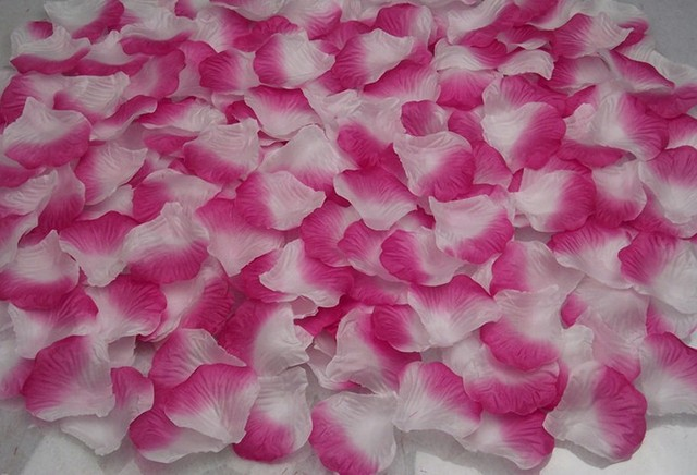 Free shipping 1200pcslot high quality polyester simulation rose free shipping 1200pcslot high quality polyester simulation rose petals hot pink white color mightylinksfo