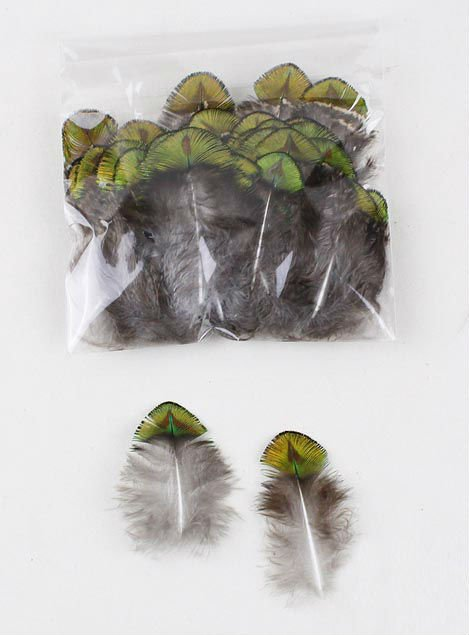 """Hot! 100pcs/Lot 2-4"""" 4-10cm Washed Gold Peacock Plumage Feathers Free shipping"""
