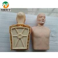BIX/CPR100A Half Body Electronic CPR Training Manikin WBW065