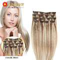 Clip In Human Hair Extensions 28 Colors Brazilian Virgin Hair Clip In 70g-120g Honey Blonde Clip In Human Hair Extensions