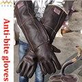 60cm long Anti-bite Leather gloves Tactical Animal Training Dog Cat Snake Bite Anti-scratch Protective Training Feeding Gloves