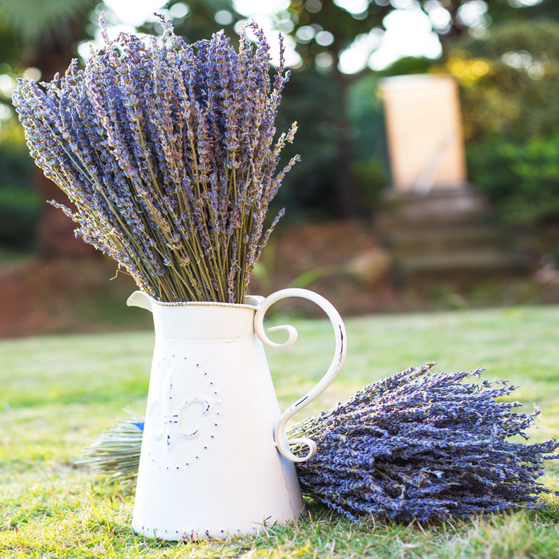 New Whole Natural Dried Flower Uk Lavender Flowers For Home Decoration Artificiales Real