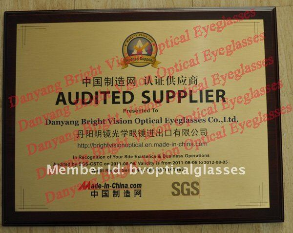 SGS Audit.jpg