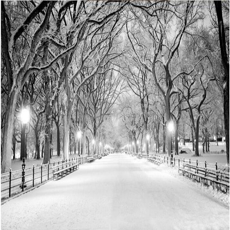 Beibehang 3d Wallpaper Custom Mural  Wall Sticker Black And White Wood Road Snow TV Setting Wall Painting Photo Wallpaper For 3d