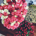 Tanya_Chesnokova_