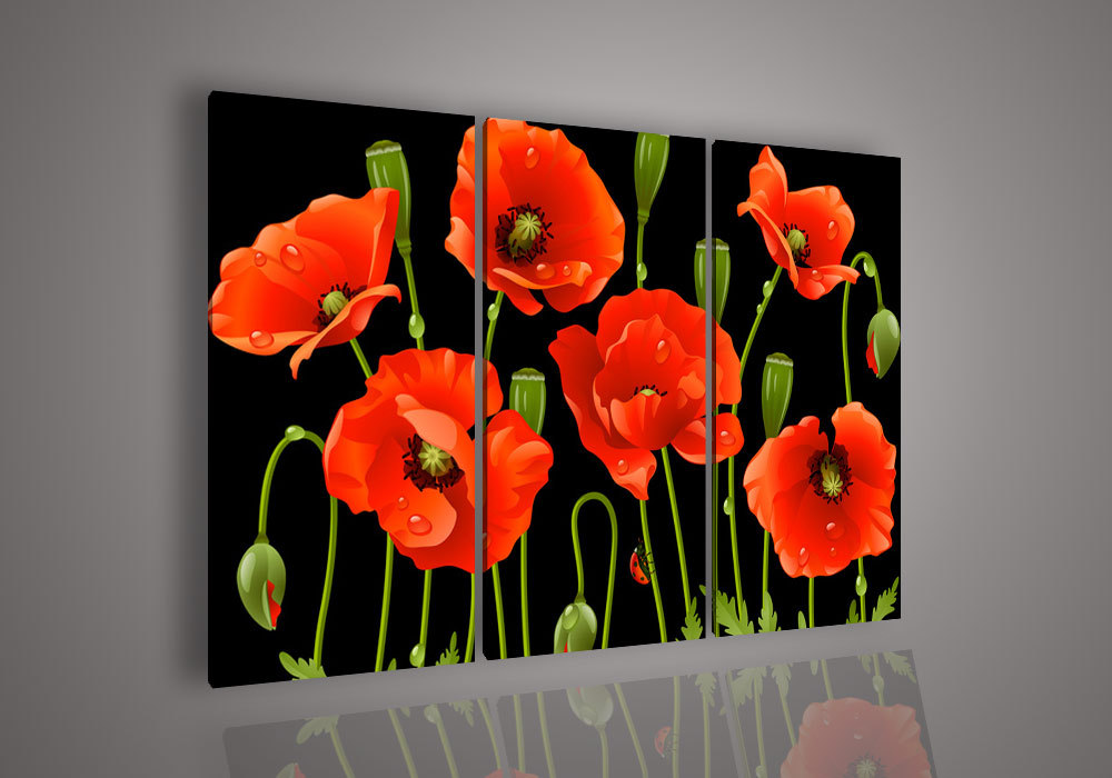 3 pieces of wall art not against modern abstract acrylic flowers red 3 pieces of wall art not against modern abstract acrylic flowers red poppy oil painting on cloth in painting calligraphy from home garden on mightylinksfo