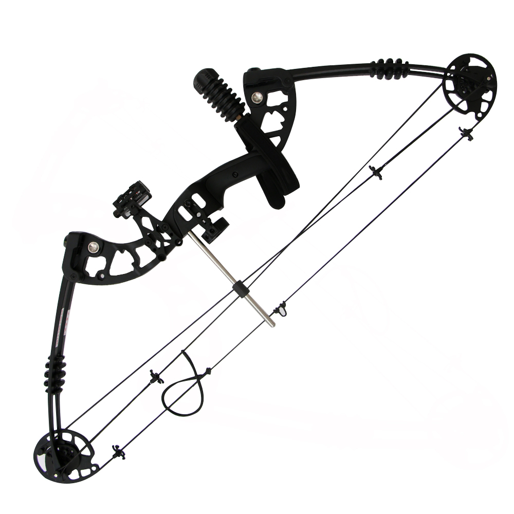 Whole Set Archery Hunting Compound Bows 30lbs-60lbs Aluminum Compound Bow Black Archery Compound Bow with Accessories free shipping 697 619 7 7x17x5 mm full zro2 ceramic ball bearing