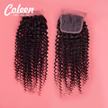 Peruvian Kinky Curly Closure 4x4 Peruvian Lace Closure Free/Middle/Three Part Top Peruvian Virgin Hair Lace Clousre Human Hair