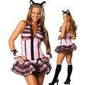 Бесплатная доставка взрослых розовый сексуальный комплект кошка костюм женский хэллоуин взрослые сексуальные женщины леди платье косплей карнавальный костюм