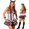 Free shipping adult pink sexy set cat women's costume halloween adult sexy women lady party dress cosplay carnival costume