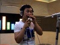 классическая гармоника и вокальный микрофон, бесплатная доставка