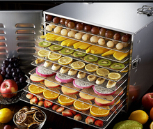 SS 304 220V electric multi vegetables dehydrator fruit dryer /food dryer household nuts oven