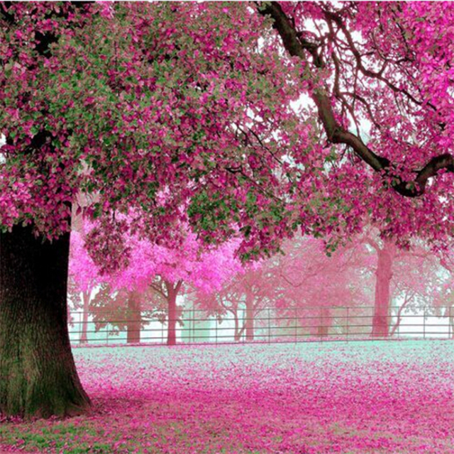 Purple Flower Tree 3D Wall Papers Cherry Blossom Wallpaper