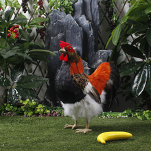 large stock realistic chicken figurine
