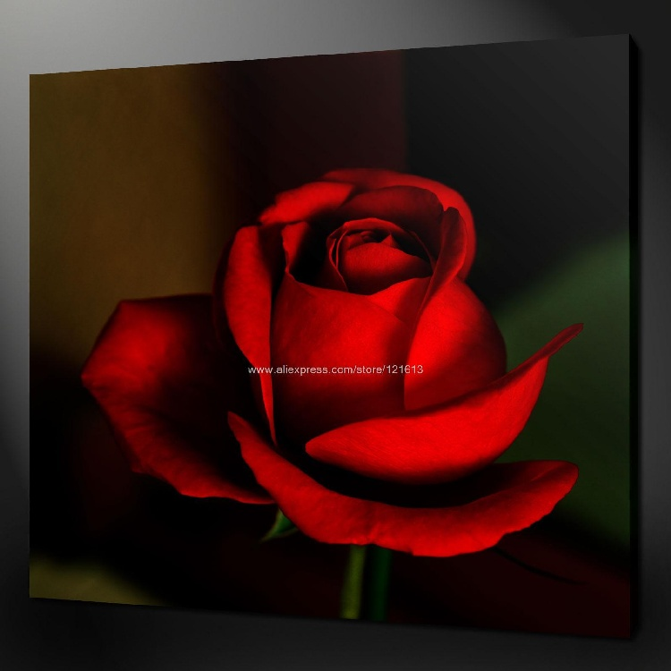 Abstract Red Rose Premium Canvas Picture Wall Art Many Oil Paintings African Decor Large For Living Room Resta In Painting Calligraphy From