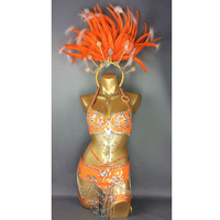 free shipping hot selling Sexy Samba Rio Carnival Costume new belly dance costume with orange Feather Head piece