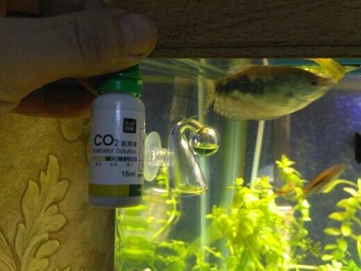 на флаконе написано не добавлять воды,на воздухе посинело, в аквариуме подал больше со2 позеленело,5 дней без компрессора 120 капель в минуту со2 ,жду когда пожелтеет, рыбы живы, думаю работает,если кто здохнет дополню:-)