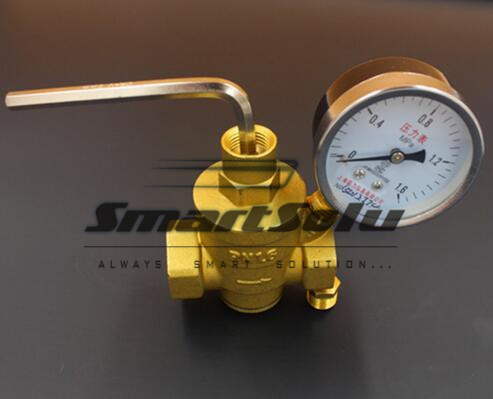 Free Shipping 1 Dn25 Brass Female Pressure Reducing Valve Relief With 1.6mpa Gauge Pipe Fitting DF2871 90kpa electric pressure cooker safety valve pressure relief valve pressure limiting valve steam exhaust valve