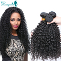 Malaysian Kinky Curly Virgin Hair 3Pcs/Lot Malaysian Human Hair Weave 6A Malaysian Human Virgin Hair Rosa Queen Hair Products