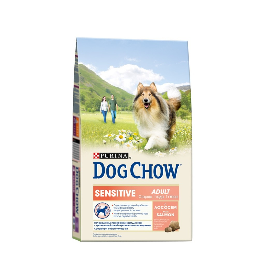 Dog Chow dry food for adult dogs over 1 year old with sensitive digestion with salmon, 6.4 kg. the 1 000 year old boy