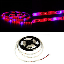 1~5m 5050 DC12V Waterproof LED Plant Grow Lights Strip Red Blue 3:1 for Greenhouse Hydroponic Plant Growing 60leds/m