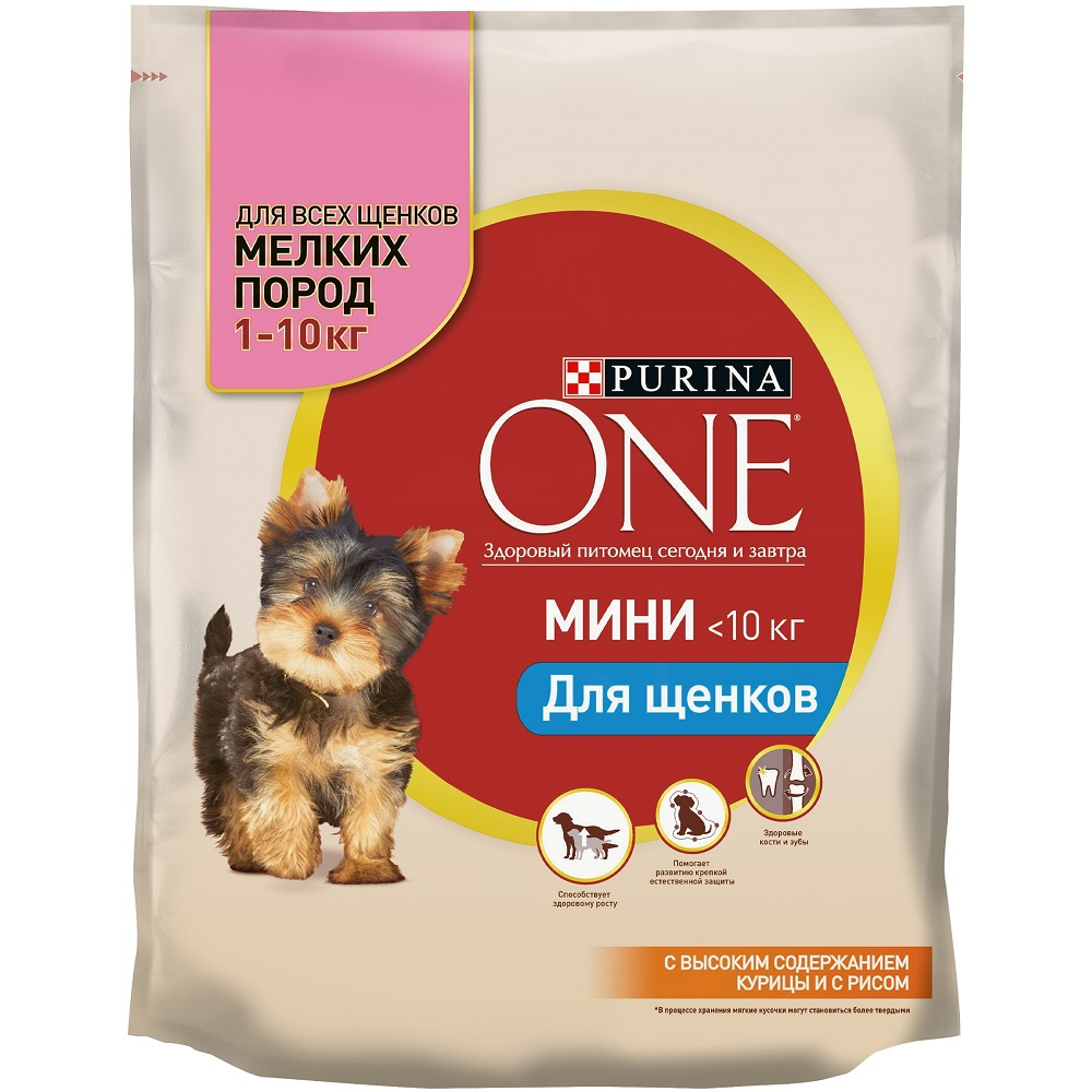 Purina ONE MINI dry food for puppies of small breeds, with chicken and rice, Package, 600 g dog chow dry food for puppies of small breeds with chicken package 800 g
