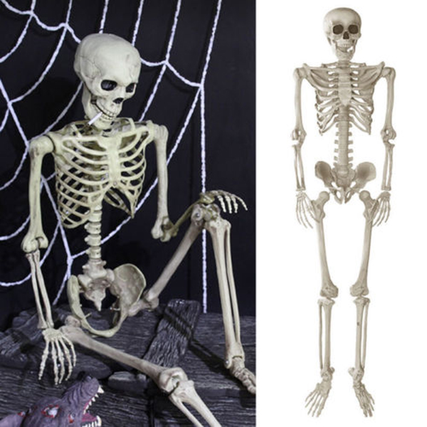 1 85m Jointed Skeleton Decoration Party Jointed Halloween Skeleton for Party Haunt House Prank Spooky Props