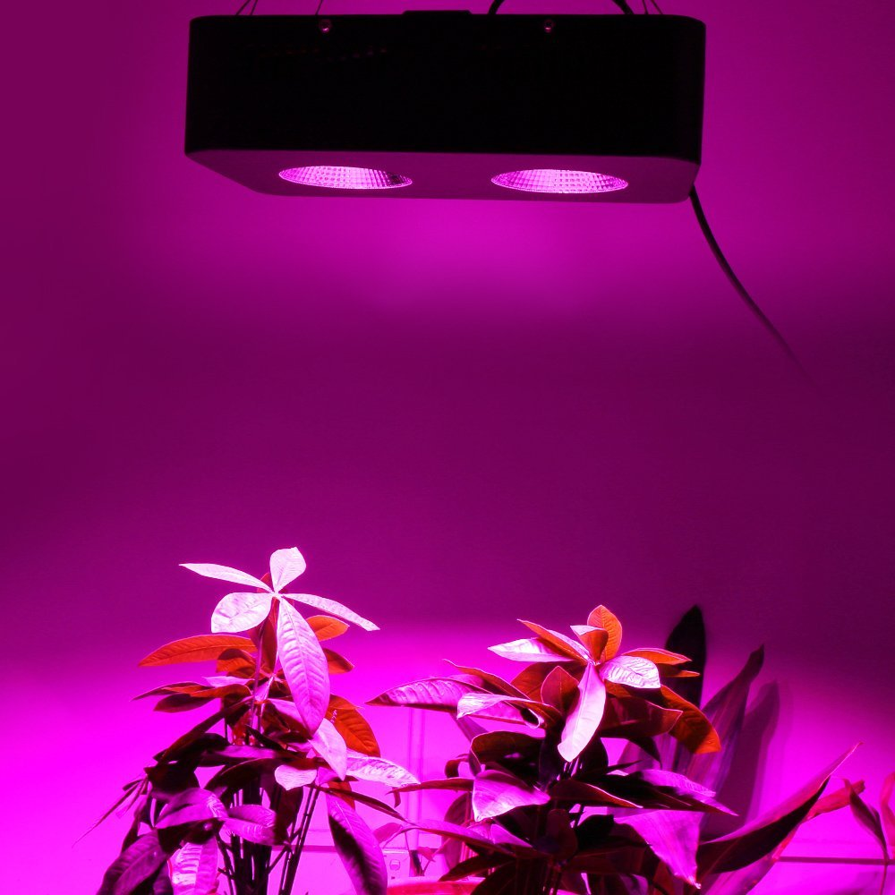 Купить с кэшбэком LED Grow Light Venesun 500W COB Full Spectrum Plant Growing Lamps for Hydroponic Greenhouse Indoor Plants Veg and Flower